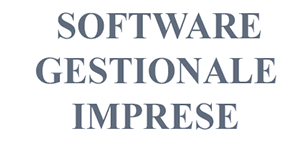 software gestionale imprese